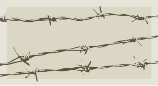 Barbed wire-long